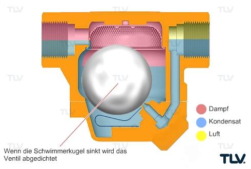 Wie arbeiten  mechanische Kondensatableiter? Funktionsmechanismen und Vorteile