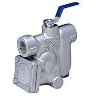 Steam Traps with Bypass Valve